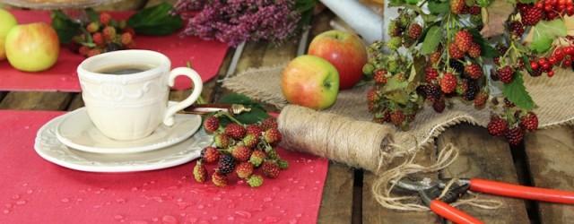 abwischbare Gartentischsets
